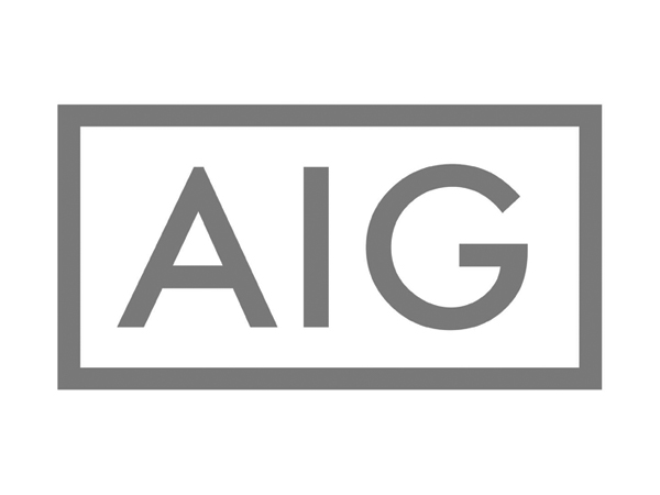 AIG Grey - Our latest partners